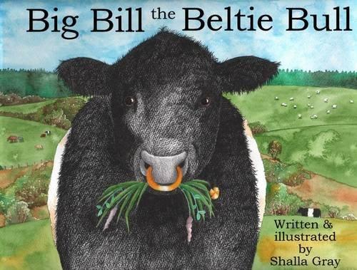 9780957640214: Big Bill the Beltie Bull