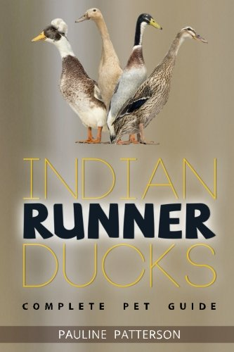 9780957697898: Indian Runner Ducks: The Complete Owners Guide