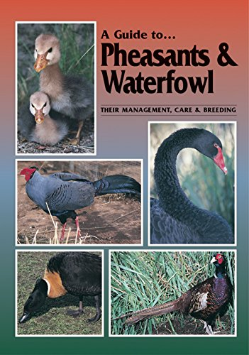 9780958710237: A Guide to Pheasants and Waterfowl: Their Management, Care and Breeding
