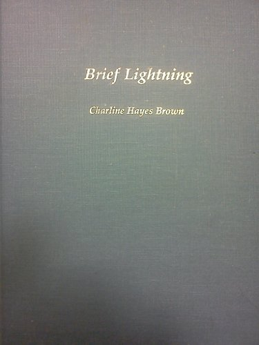 9780960257003: Brief lightning