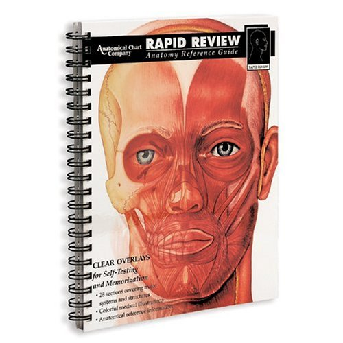 9780960373093: Rapid Review of Anatomy Reference Guide