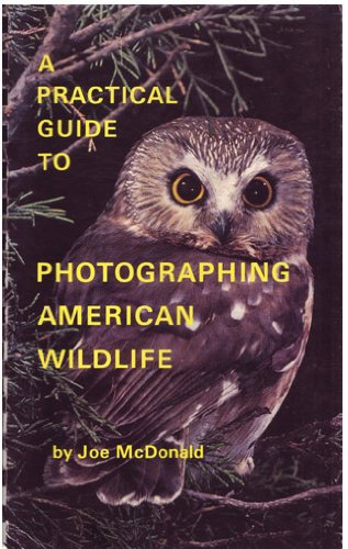 A Practical Guide to Photographing American Wildlife