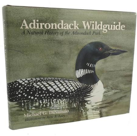 Adirondack Wildguide A Natural History Of The: Dinunzio, Michael G.