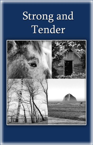 Strong And Tender: A Guide For The Father Whose Baby Has Died: Schwiebert, Pat