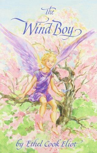 9780961596149: The Wind Boy