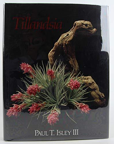 9780961767501: Tillandsias