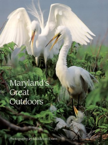 9780962080647: Maryland's great outdoors