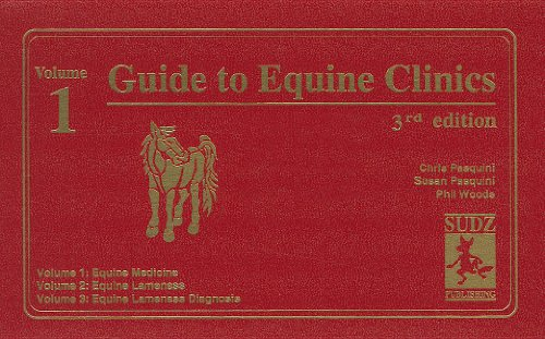 Guide to Equine Clinics: Chris Pasquini &
