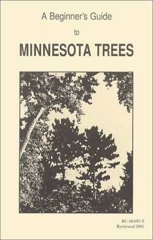 A Beginners Guide to Minnesota Trees