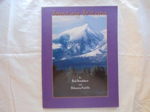 9780962931956: Amazing Arizona by Bob Bradshaw and Eldemira Portillo