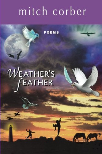 9780963740540: Weather's Feather