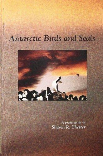 9780963851123: Antarctic Birds and Seals
