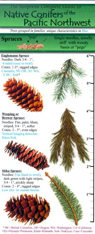 9780963970596: The Ecopress Complete Guide to Native Conifers of the Pacific Northwest