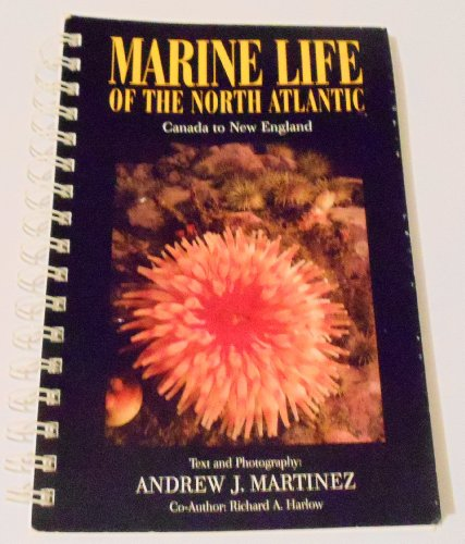 9780964013100: Marine Life of the North Atlantic: Canada to New England