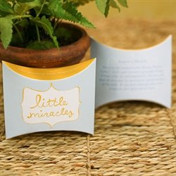 9780964017856: Little Miracles Window Message Cards (The Gift of Inspiration)