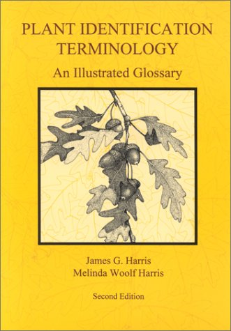 9780964022164: Plant Identification Terminology: An Illustrated Glossary