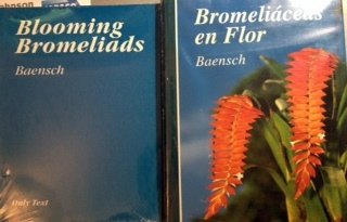 9780964105614: Bromeliaceas En Flor