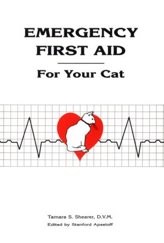 Emergency First Aid for Your Cat