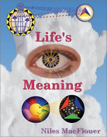 9780964848306: Life's Hidden Meaning