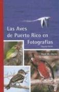9780965010443: Las Aves de Puerto Rico en Fotografías (Spanish Edition)