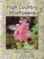 9780965121125: High Country Wildflowers