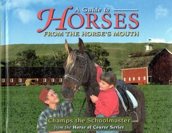 A Guide To Horses From The Horse's Mouth: Cline, Liz