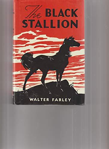 9780965476027: The Black Stallion