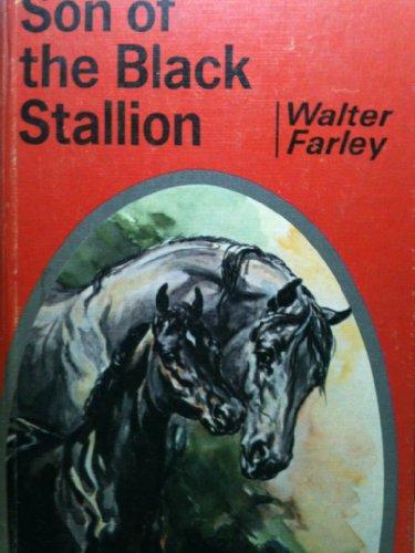 Son of the Black Stallion, Walter Farley