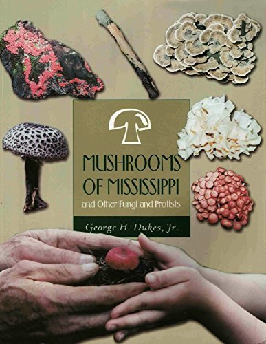 9780965538039: Mushrooms of Mississippi: And Other Fungi and Protists