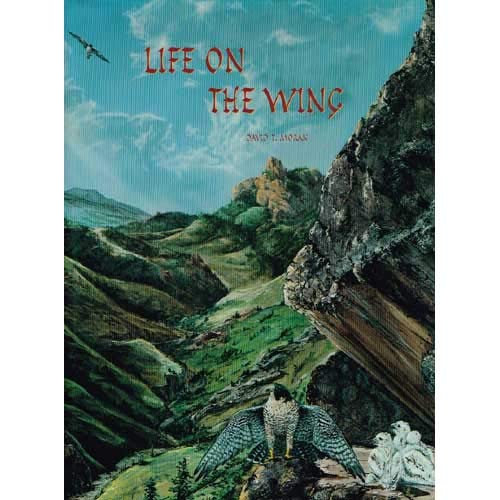 9780965551908: Life on the wing: Adventures with birds of prey