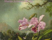 9780965581905: Martin Johnson Heade: A Survey : 1840-1900