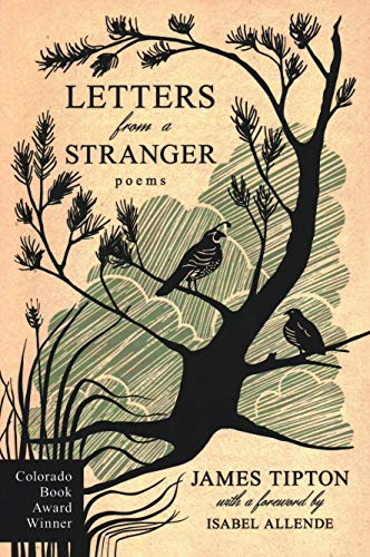 9780965715935: Letters from a Stranger: Poems