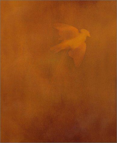 Adam Fuss: Eugenia Parry