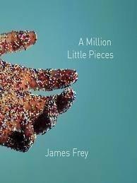9780965750592: A Million Little Pieces