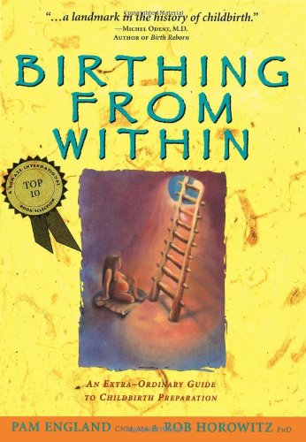 9780965987301: Birthing from Within: An Extra-Ordinary Guide to Childbirth Preparation