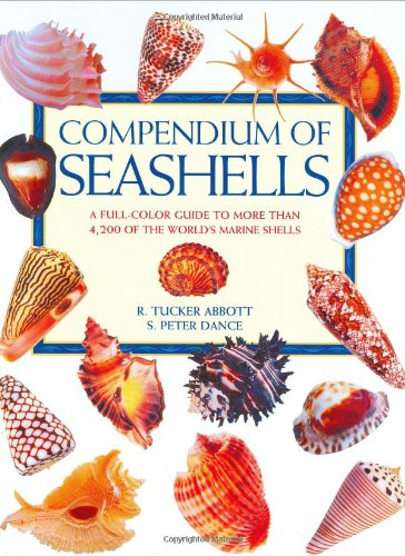 9780966172003: Compendium of Seashells: A Color Guide to More Than 4,200 of the World's Marine Shells