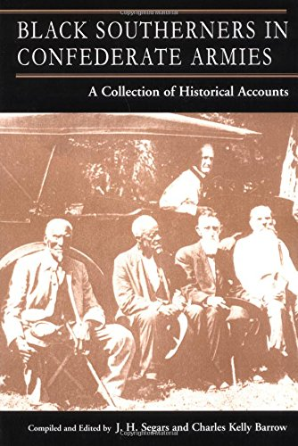 9780966245417: Black Southerners in Confederate Armies