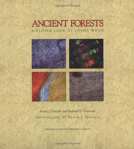 9780966293814: Ancient Forests: A Closer Look at Fossil Wood