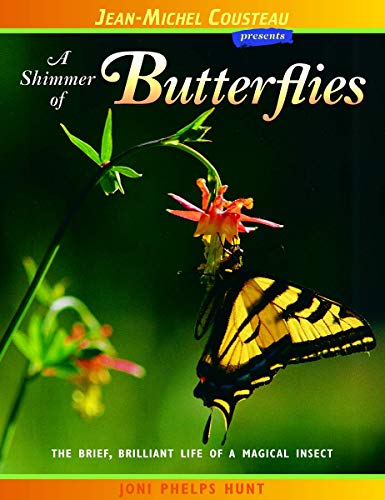 A Shimmer of Butterflies: Hunt, Joni Phelps