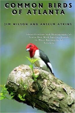 9780966724004: Common Birds of Atlanta