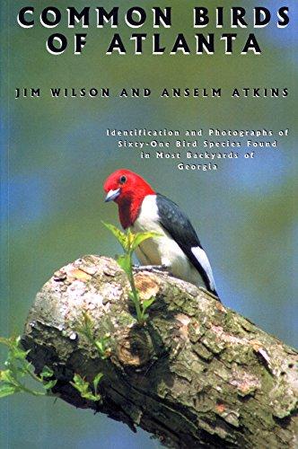 9780966724011: Common Birds of Atlanta
