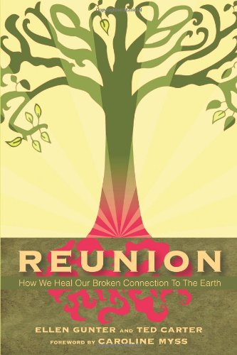 9780966780871: Reunion: How We Heal Our Broken Connection to the Earth: 1