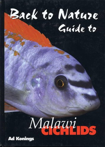 9780966825596: Back to Nature: Guide to Malawi Cichlids