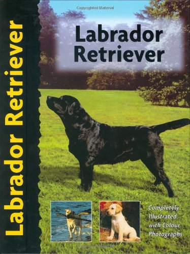 9780966859232: Labrador Retriever (Pet Love)
