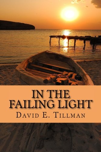 9780966897234: In the Failing Light: a memoir of love and cancer