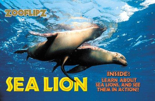 Wildlife Flipbooks (Sea Lion): Grant-Gray, Jody