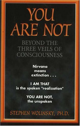 9780967036298: You Are Not: Beyond the Three Veils of Consciousness