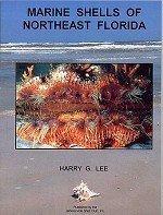 9780967125404: Marine Shells of Northeast Florida