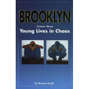 9780967129402: Brooklyn: Lessons About Young Lives in Chaos