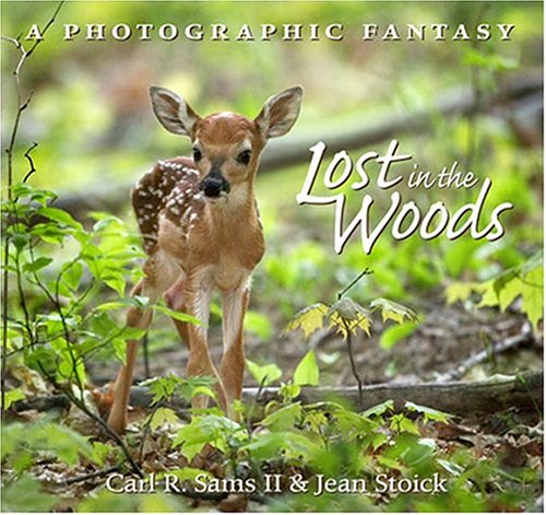 9780967174884: Lost In The Woods: A Photographic Fantasy